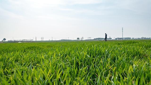国土空间规划专项立法启动,土地、城乡规划将成历史